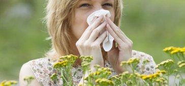 alerjinin-nedenleri